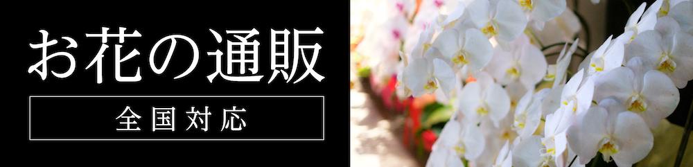お花の通販 全国対応